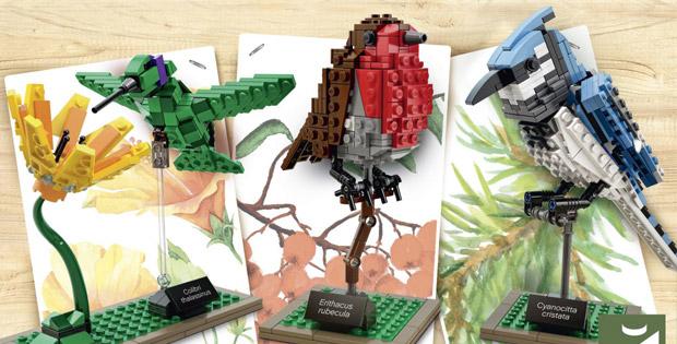 lego-ideas-birds-21301-vignette